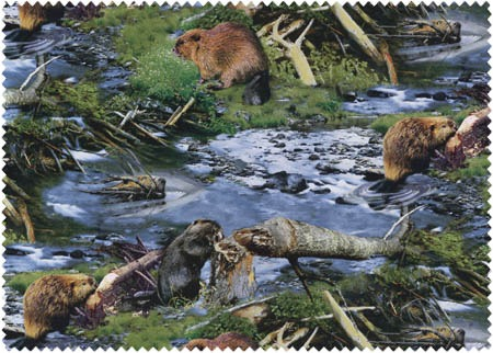 Beavers at Work - 1 (COTTON)