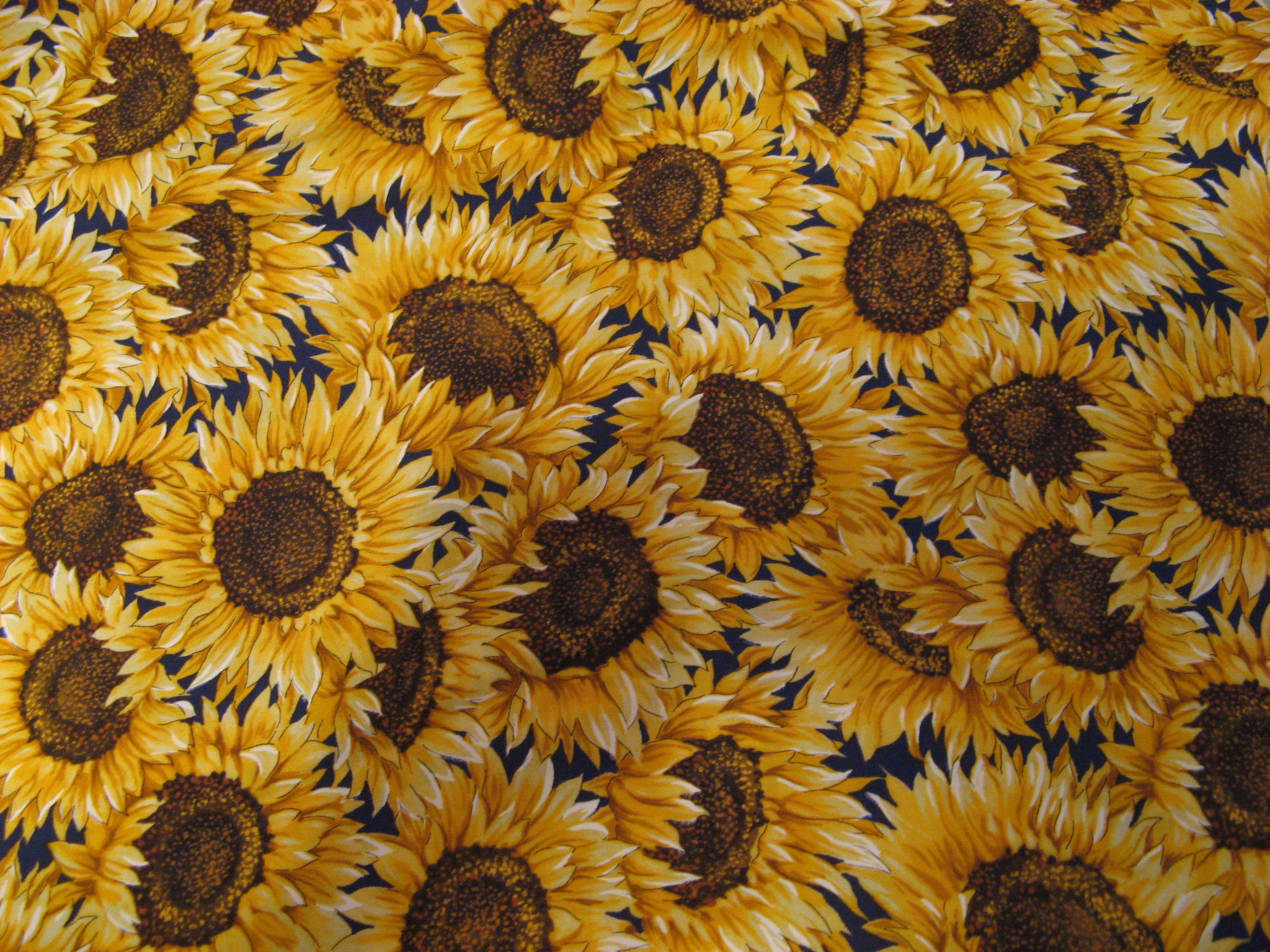 SUNFLOWERS B41 - COTTON